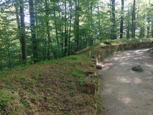 fortificatie-dacica-zid